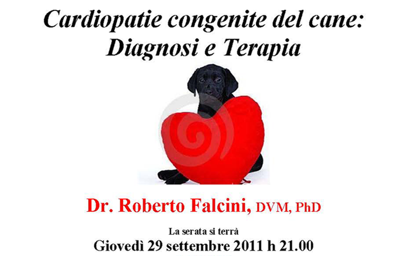 Cardiopatie-congenite-del-cane-Diagnosi-e-terapia
